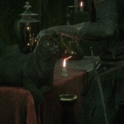 Mortal Shell Cat Header