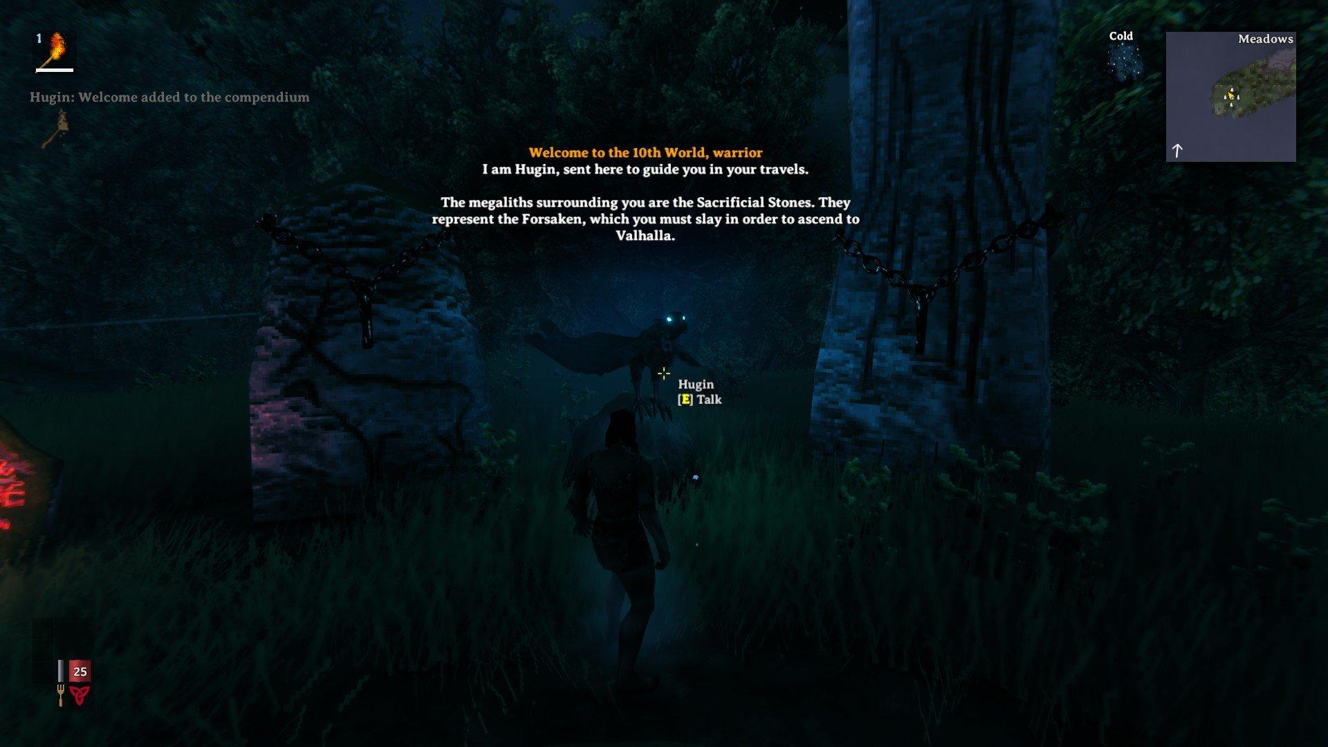 Valheim - Hugin Screenshot NPC