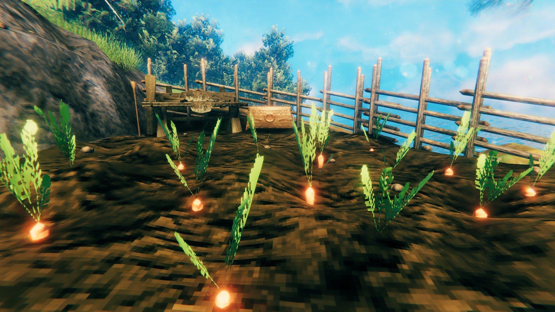 Valheim - Carrot Farm Screenshot