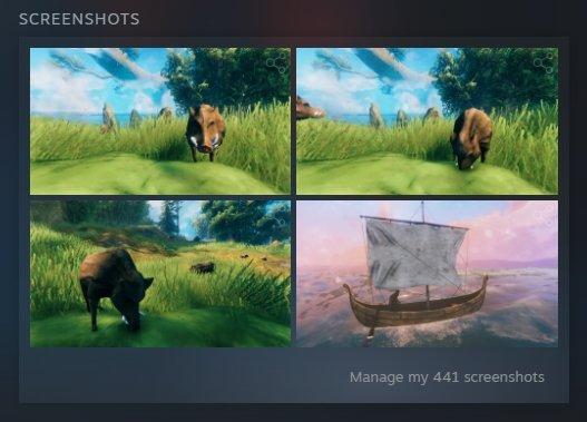Valheim - Steam Screenshots Folder