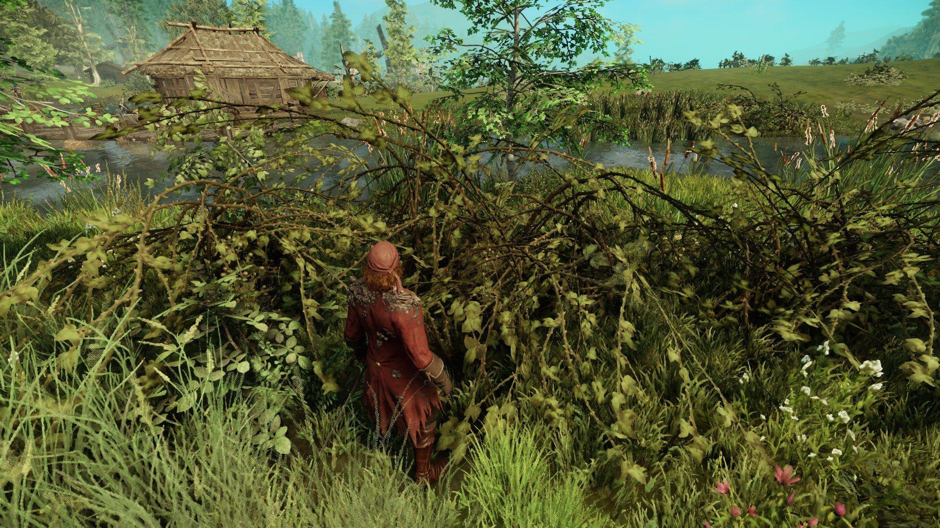 New World - Briar Branches Bush